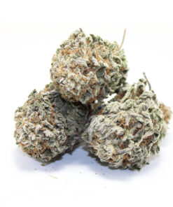 white widdow sativa of indica,what strain is white widow